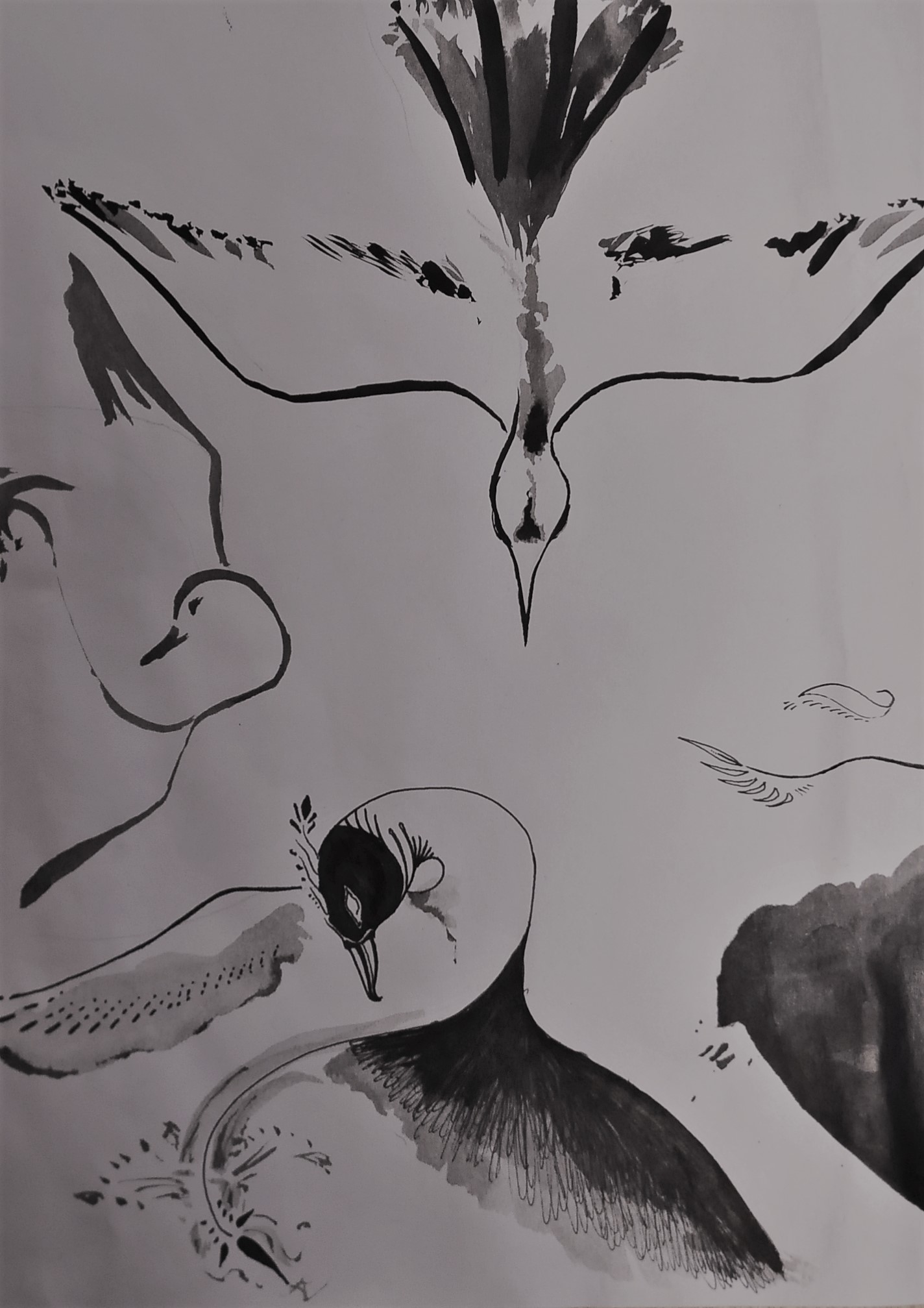 Phoenix Sketches by Andreea Murgu